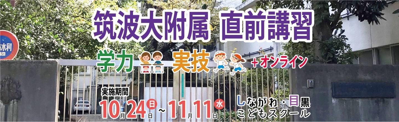 筑波大学附属小学校 直前講習