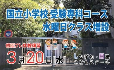国立小学校受験コース増設